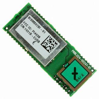 BISMS02BI